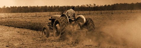 Berrien County, GA Farmer
