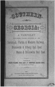 1881 South Georgia Pamphlet.