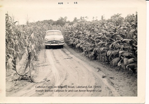 Ford automobile owned by Lueannie and Joseph Burton Calhoun, on the Calhoun Farm, 1955. (Image courtesy of I. Mitchell Calhoun)