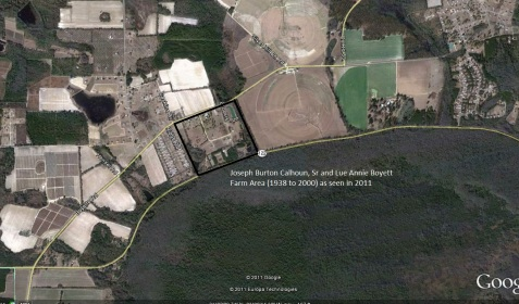Calhoun Farm, aerial view.