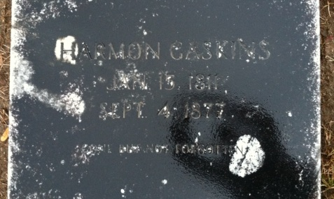 Grave of Harmon Gaskins, Gaskins Cemetery, Berrien County, GA