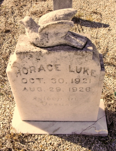 Grave marker of Horace Luke, Flat Creek Cemetery, Berrien County, GA.