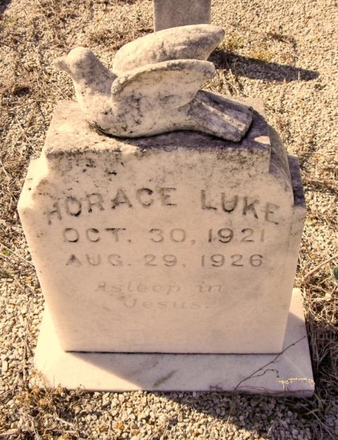 Grave marker of Horace Luke, Flat Creek Cemetery, Berrien County, GA.