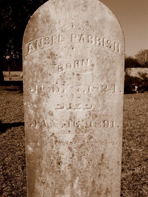 Grave of Ansel Parrish (1824 - 1891), Pleasant Cemetery, Berrien County, GA. Image source: FindAGrave.com