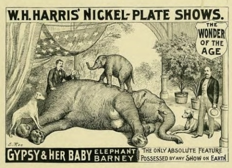 Advertisement depicting Gypsy and Barney in Harris' Nickel Plate Shows.