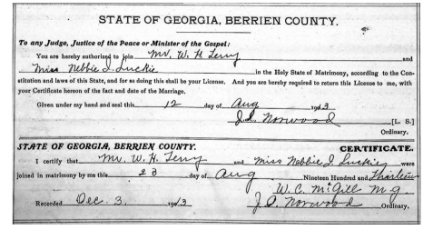 Marriage certificate of W. H. Terry and Nebbie Luckie, August 28, 1913.