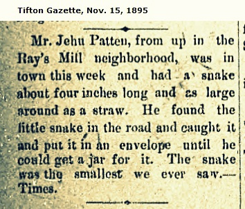 Jehu Patten captures serpent, November 15, 1895.