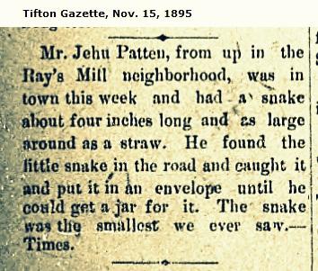 Jehu Patten captures serpent, November 15, 1895.