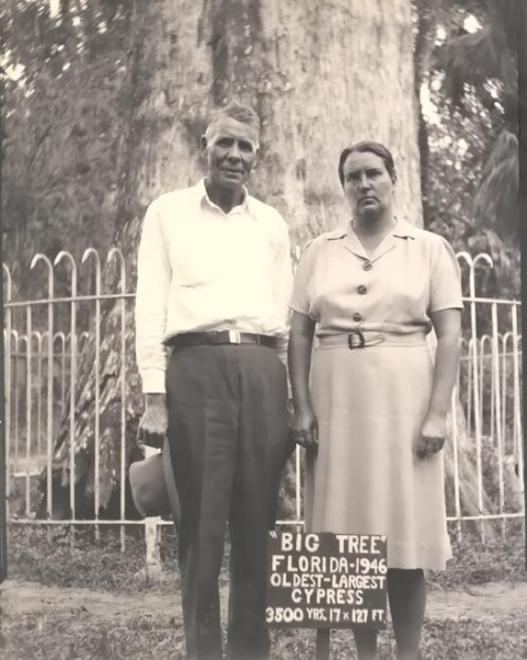 "Joseph John ""Joe"" Spell and Matilda Augusta ""Della"" (Richardson) Spell visit the Big Tree at Longwood, FL, 1946."
