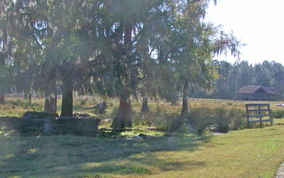 <strong>Clements Sawmill Site in 2008, Ray City, GA.</strong><br /> This view of the site of the Clements Sawmill, taken from the tracks of the Georgia & Florida Railroad, shows the location of the remaining foundations. In the distance a residential structure that was later moved to the sawmill site. The