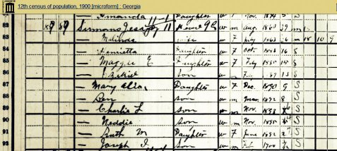 1900 census numeration of Jesse Sirmans, with his wife Malind King Sirmans, and children Henrietta, Maggie, Ezekiel, Mary Alice, Ben, Ruth, Charlie, Neddie, and Joseph. Image courtesy of Internet Archive:  https://archive.org/stream/12thcensusofpopu180unit#page/n82/mode/1up