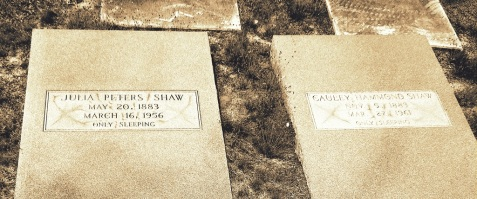 Graves of Cauley Hammond Shaw and Julia Peters Shaw, Cat Creek Cemetery, Lowndes County, GA.  Image courtesy of  Cullen and Jeanne Wheeler.