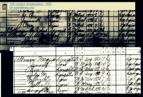 1900 Census enumeration of Walter G. Altman and family, Bowens Mill, GA. https://archive.org/stream/12thcensusofpopu229unit#page/n241/mode/1up