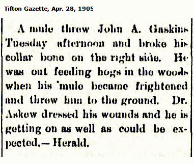 John A. Gaskins thrown by a mule.