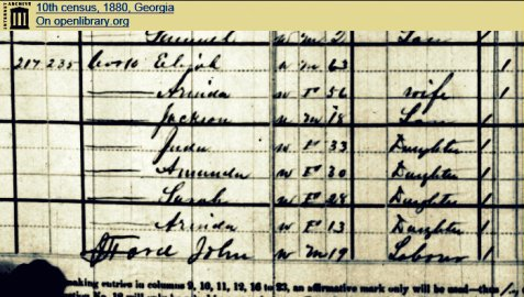 1880 Census enumeration of the family of Elijah Cook in Berrien County, GA.