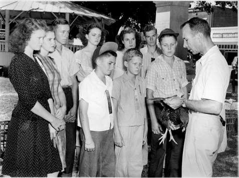 4H Poultry Project, Berrien County, GA. September 1947
