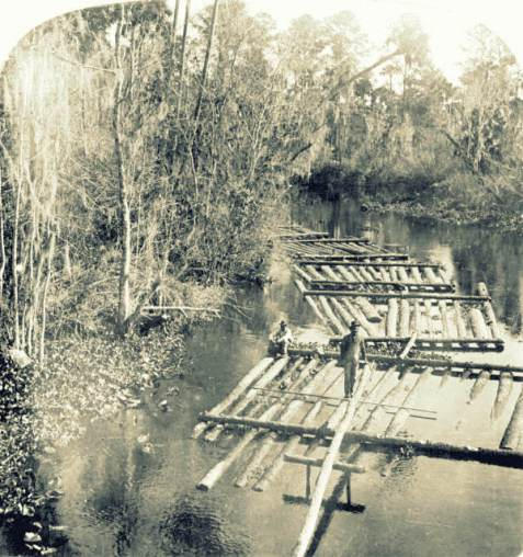Timber rafting on a tributary of the St. Johns River, Florida. State Archives of Florida, Florida Memory, http://floridamemory.com/items/show/27761