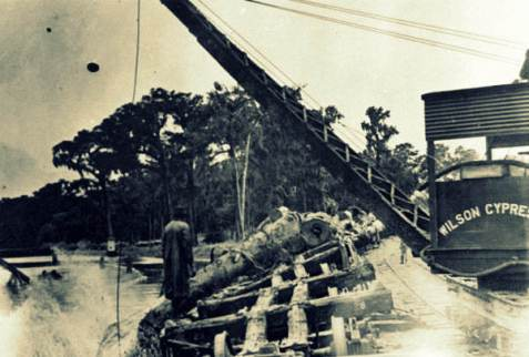 Wilson Cypress Company dumping logs into the Saint Johns River. State Archives of Florida, Florida Memory, http://floridamemory.com/items/show/38983