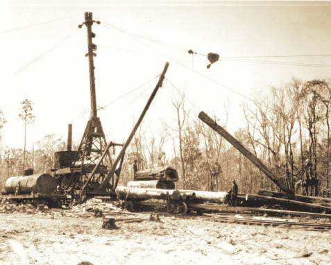 Steam powered skidder loading logs. State Archives of Florida, Florida Memory, https://floridamemory.com/items/show/38948