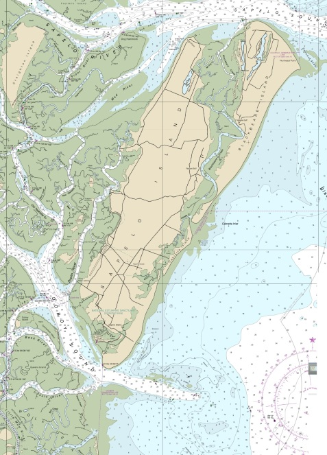 Current navigational chart showing Sapelo Island, Blackbeard Island, Doboy Island, Queens Island, Wolf Island, GA. The Berrien Minute Men, Company G & K, 29th Georgia Regiment, were stationed at Sapelo Island and Blackbeard Island during 1861, defending the Altamaha River delta from Union forces.