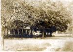 Home of William DeVane (1838-1909) Image courtesy of http://www.berriencountyga.com/