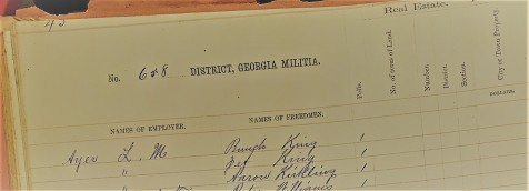 Freedmen were listed in the 1870 Lowndes County, GA Militia District 658 tax digest