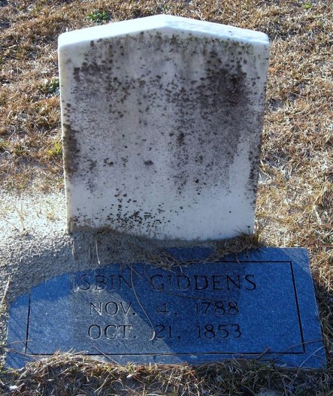 Grave of Isbin Giddens, Burnt Church Cemetery, Lanier County, GA